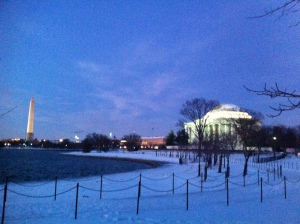 the rabid fox in front of Jefferson memorial