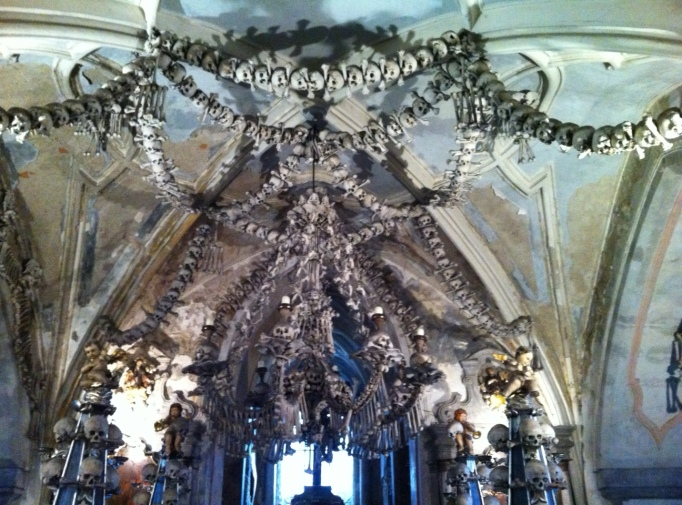 its not everyday you see a chandelier of skulls and bones