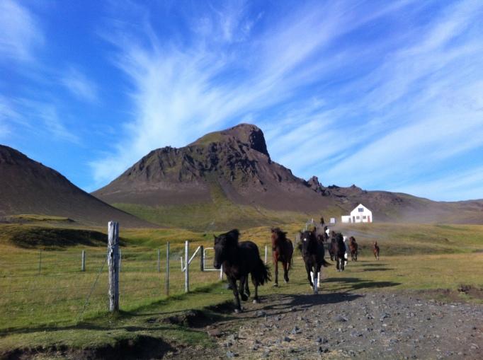 riding past the Unicorn mountain