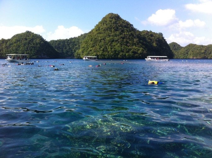 My favourite snorkel spot in the Rock Islands