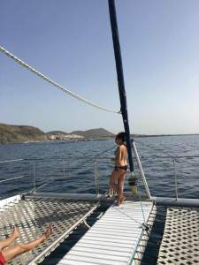 whale and dolphin scouting on our catamaran booze cruise