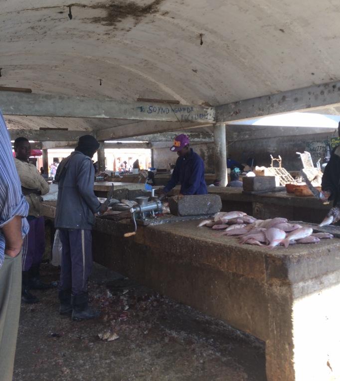 fish sorting and prepping