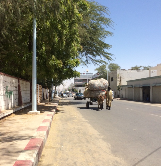 sandy streets of downtown, with overloaded donkey carriages for traffic