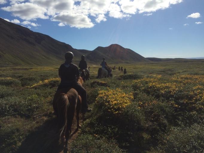 Heading into Mývatnssveit