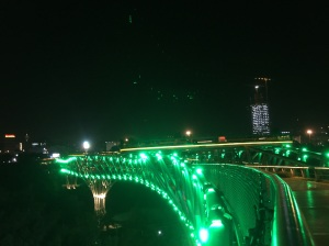 Nature Bridge by night